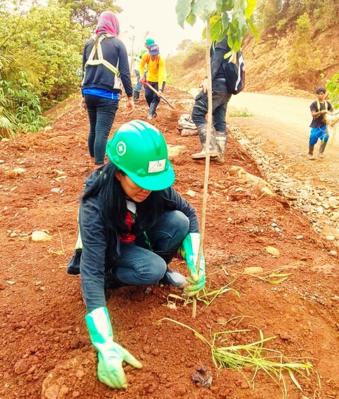 Environment technologies in mine rehab, reforestation